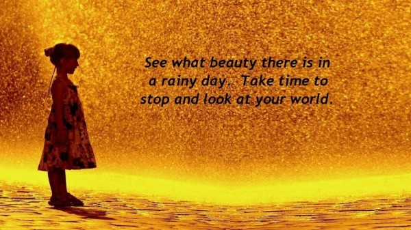 Picture: See What Beauty There Is In A Rainy Day