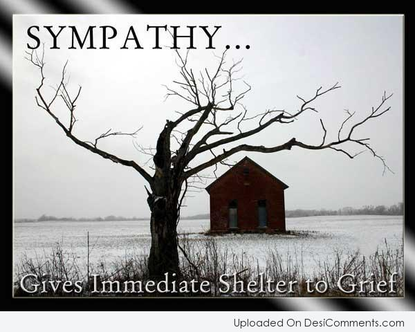 Picture: Sympathy.. Gives Immediate Shelter To Grief