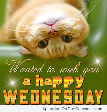 Picture: Wish You A Happy Wednesday