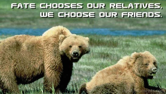 We Choose Our Friends