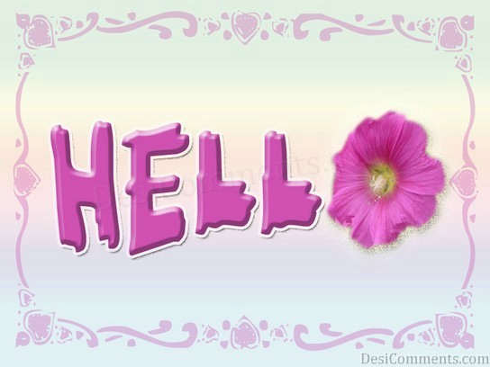 Hello With Flower Graphic