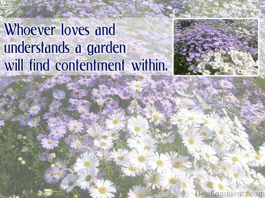 Whoever loves and understands a garden