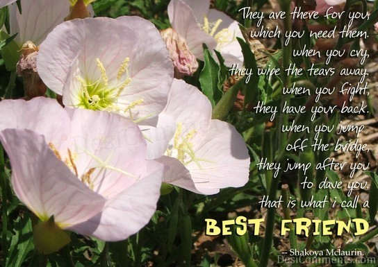 Best Friend - Poem