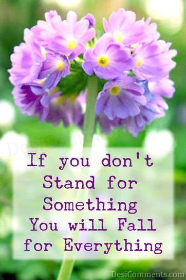 If You Don't Stand
