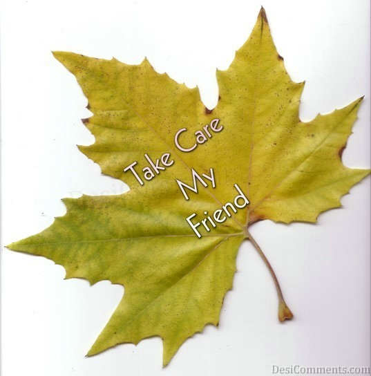 Picture: Take Care Wrote On Leaf