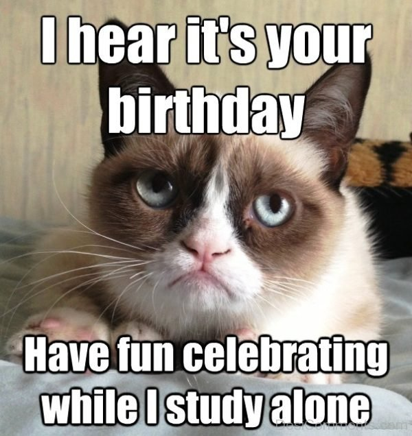 48 Most Amazing Birthday Memes Desicomments Com