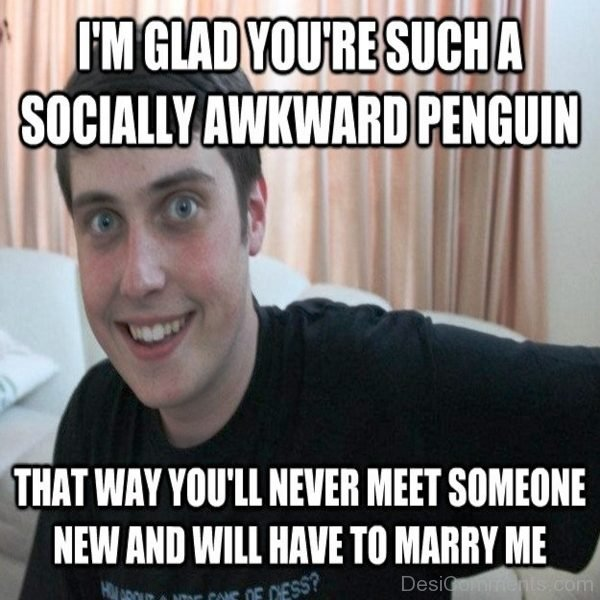 Im Glad You re Such A Socially Awkward Penguin