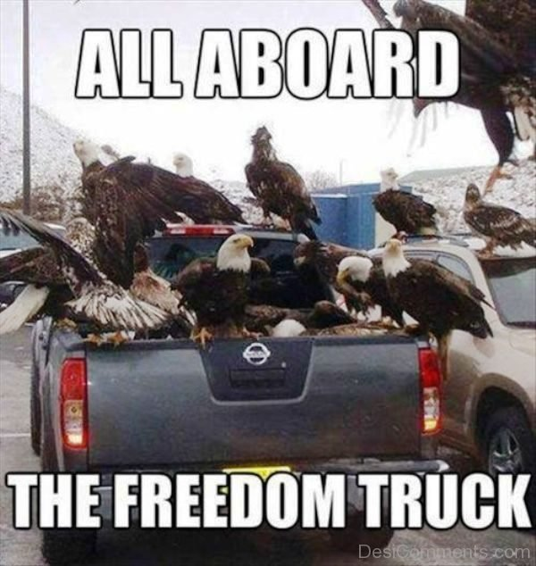 All Board The Freedom Truck
