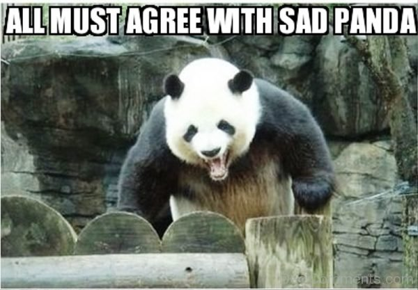 All Must Agree Wih Sad Panda