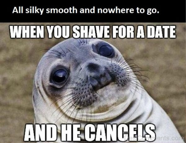 All Silky Smooth And Nowhere To Go