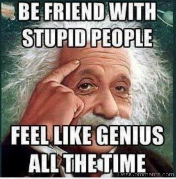 Be Friend With Stupid Person