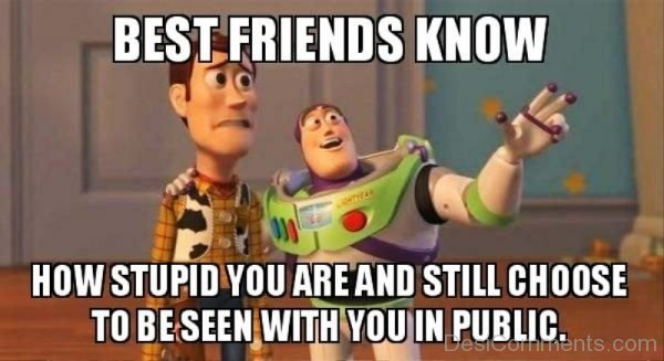 Best Friends Know How Stupid You Are