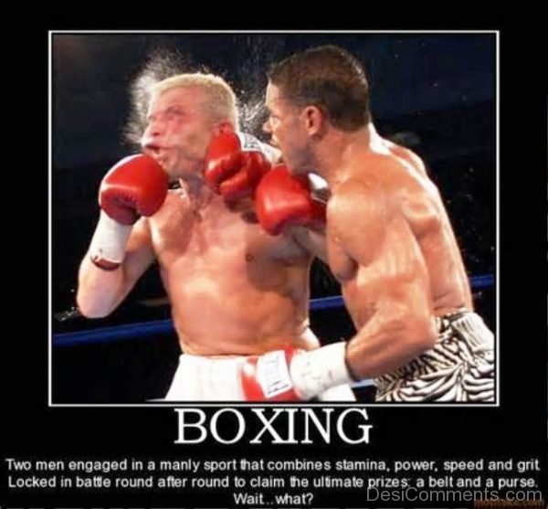 Boxing Two Men Engaged In A Manly Sport