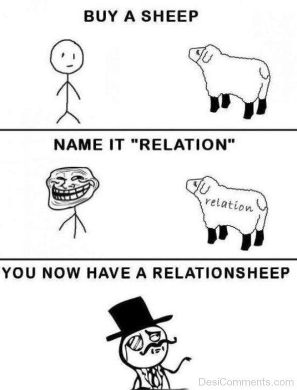 Buy A Sheep