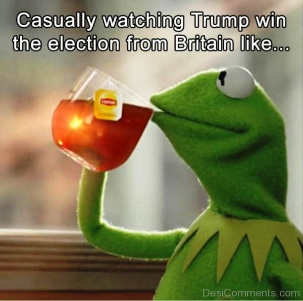 Casually Watching Trump Win The Election