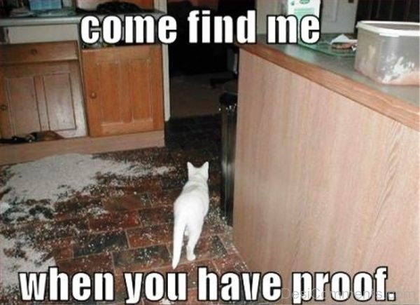 Come Find Me When You Have Proof