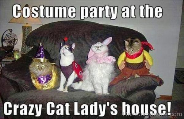Costume Party At The Crazy Cat
