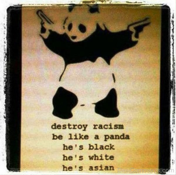 Destroy Racism Be Like A Panda
