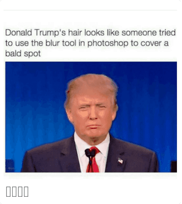 Donald Trumps Hair Looks Like Someone
