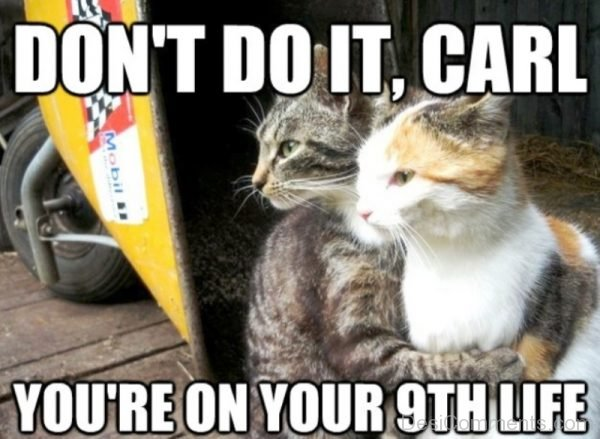 Dont Do It Carl