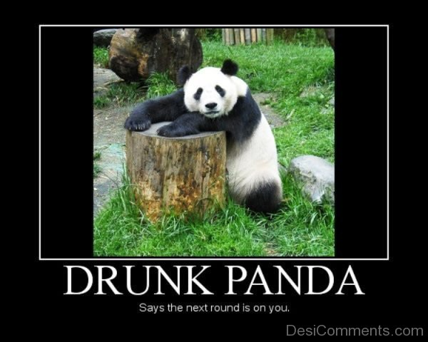 Drunk Panda Says The Next Round