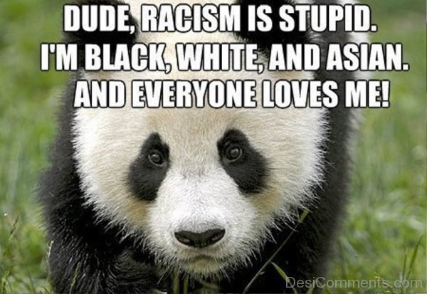 Dude Racism Is Stupid