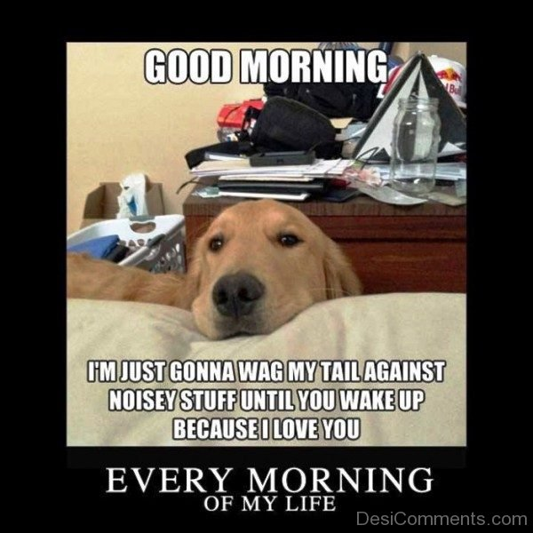 Every Morning Of My Life