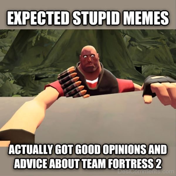 Expected Stupid Memes