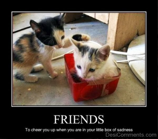 Friends To Cheer You Up