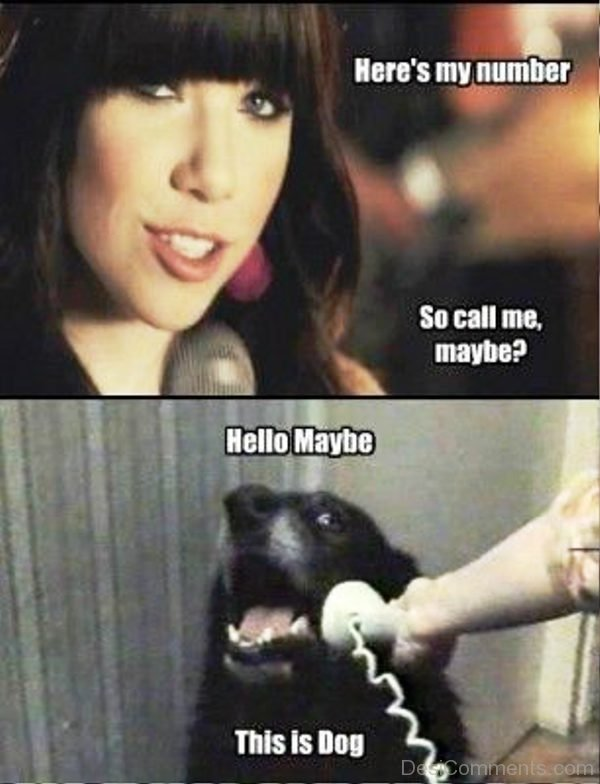 Heres My Number So Call Me Maybe