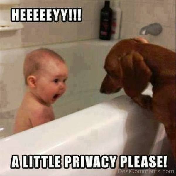 Hey, A Little Privacy Please