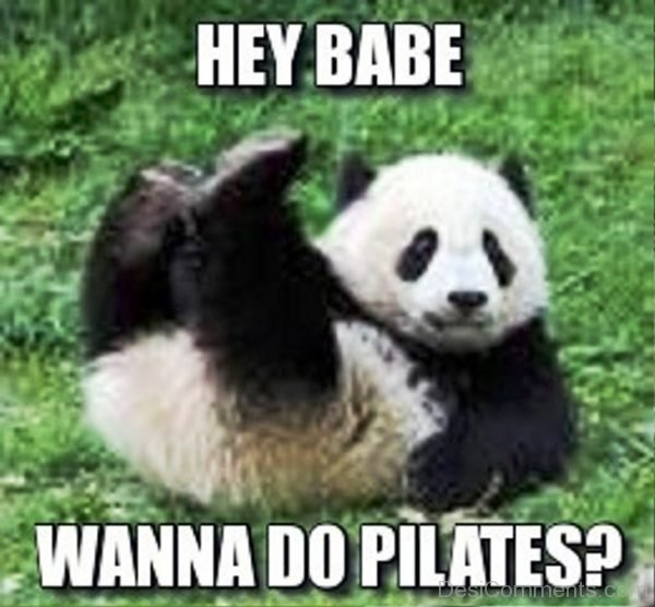 Hey Babe Wanna Do Pilates