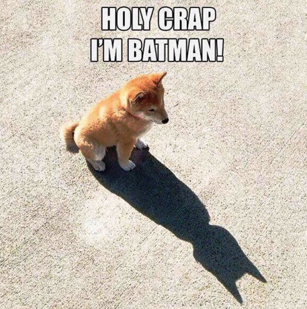 Holy Crap Im Batman