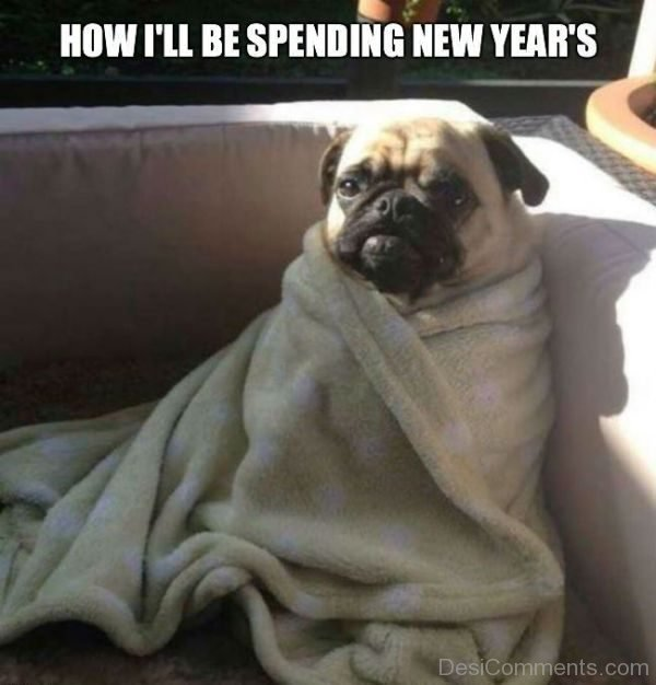 How I ll Be Spending New Years