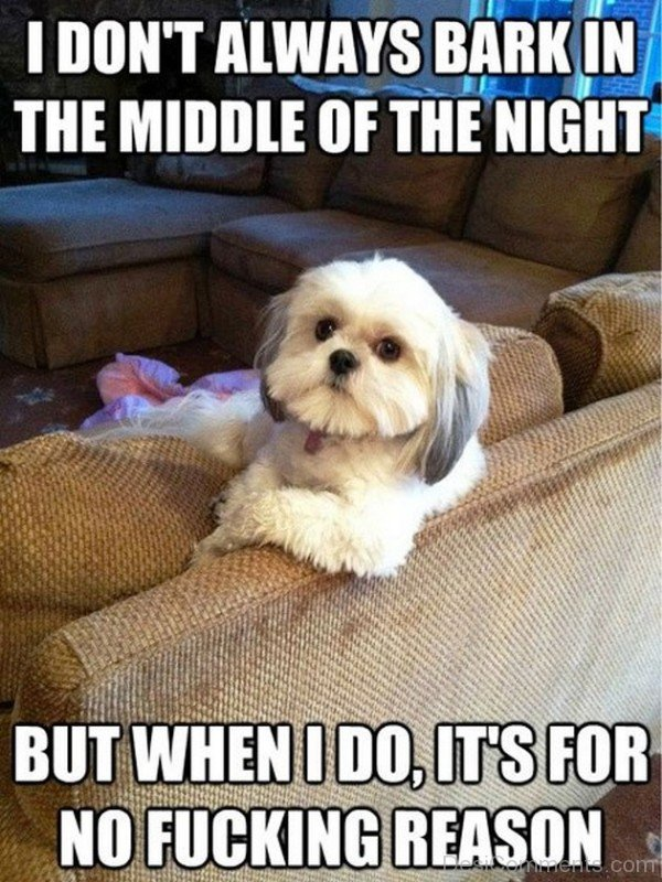 I Dont Always Bark In The Middle