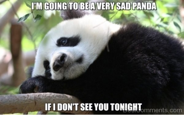 Im Going To Be A Very Sad Panda