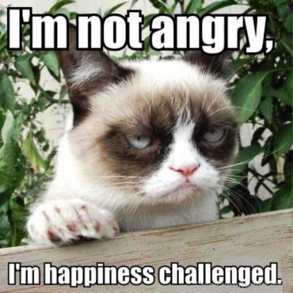 Im Not Angry