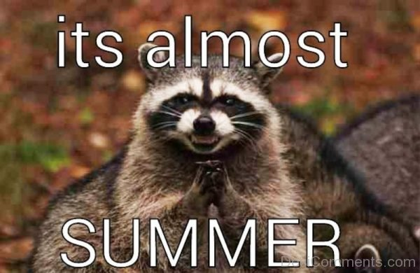 Its Almost Summer