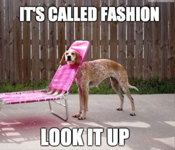 Its Called Fashion