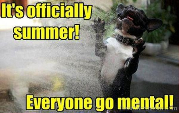 Its Officially Summer