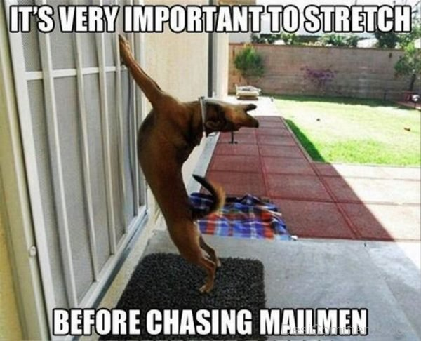 Its Very Important To Stretch