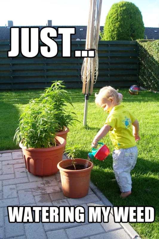 Just Watering My Weed