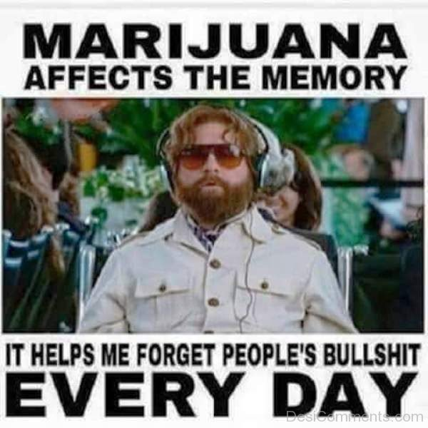 Marijuana Affects The Memory