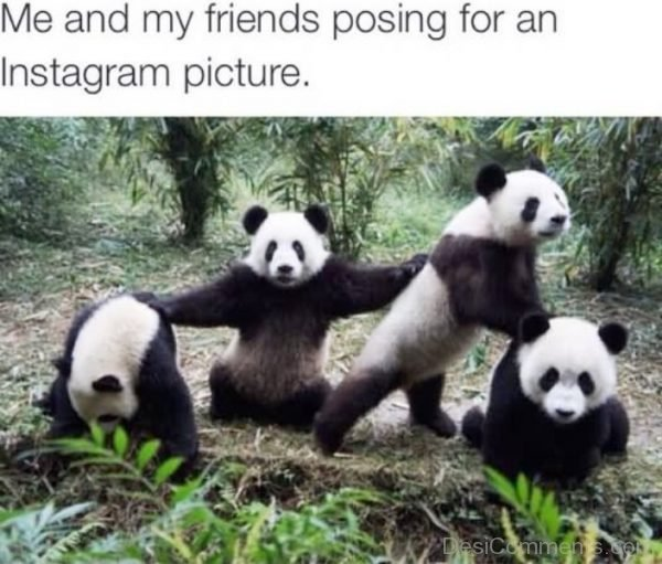 Me And My Friends Posing For An