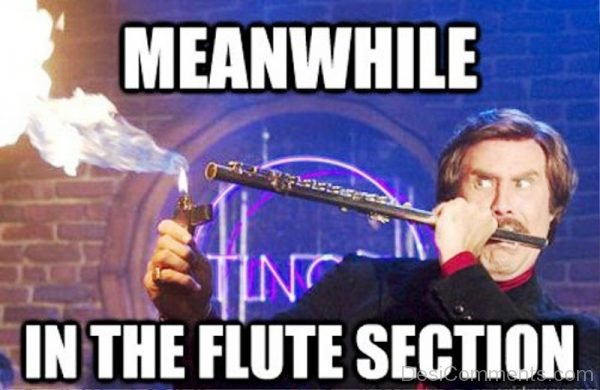 Meanwhile In The Flute Section