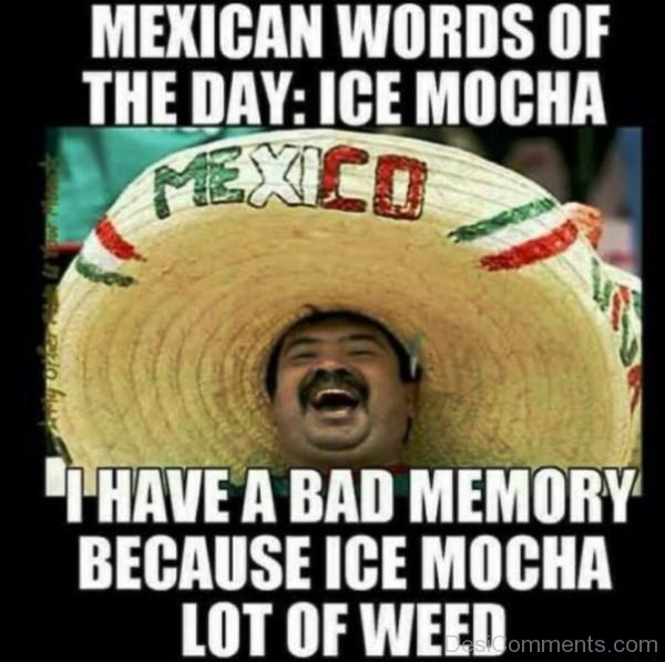 Mexican Words Of The Day