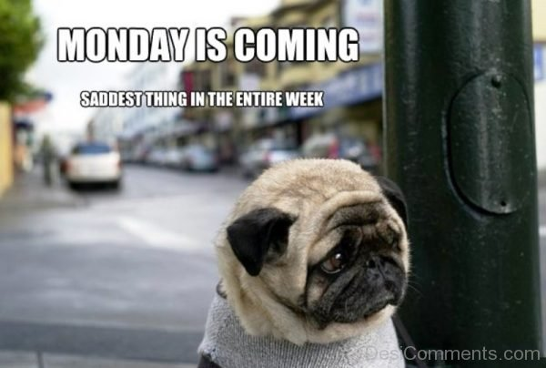 Monday Is Coming