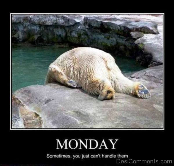 Monday Sometimes You Just Cant