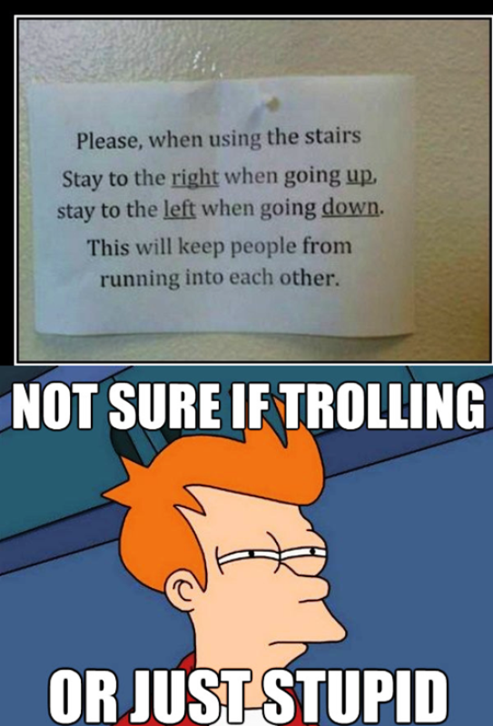 Not Sure If Trolling Or Just Stupid