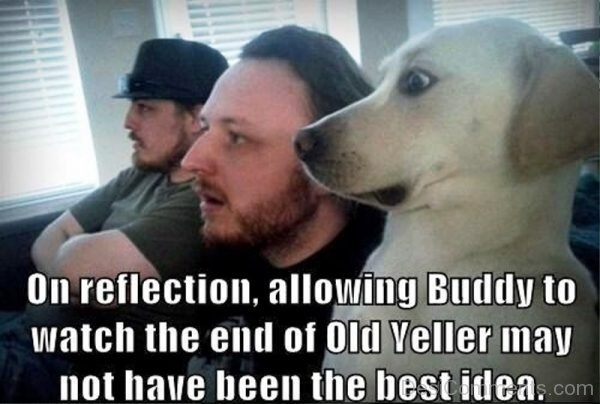 On Reflection Allowing Buddy